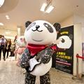 名古屋対決を制したよざくらパンダ。言動はとげとげしいが、意外
