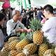 台湾地区産パイン輸入停止は「通常の生物学的安全措置」 国台弁