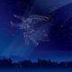 「プレアデス星団」をめぐる物語。和名は「すばる」。2月下旬からは火星との共演に注目!
