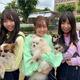 愛知・岡崎市の「わんわん動物園」でSKE48が天才犬たちとコラボ/(C)東海テレビ