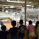 【大人の工場見学】午後の紅茶ツアーや工場限定グッズ販売も! 神奈川県「キリンビバレッジ 湘南工場」