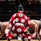 大相撲名古屋場所の大注目は!? スー女が「勢いのある美力士」を独断と偏見で選ぶ