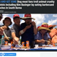 犬肉を食す食用犬農家たち(画像は『The Sun 2019年7月12日付「KIM AND GET SOME Dog meat fans troll animal cruelty activists including Kim Basinger by eating barbecued pooches in South Korea」(Reuters)』のスクリーンショット)