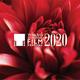 第33回東京国際映画祭/今年も10月31日〜11月9日の期間で開催予定 (C)2020 TIFF