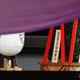 安倍晋三首相が東京・九段下の靖国神社へ奉納した「真榊(まさかき)」(2019年10月17日撮影)。(c)Kazuhiro NOGI/AFP