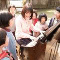 アーティストとしても活躍する大原櫻子のオルガン演奏シーン  -