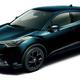 トヨタ「C-HR」にブラック系とブラウン系の特別仕様車が登場