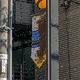 東京・恵比寿の路上にミツバチ「1万匹」情報。SNSに動画や画像も