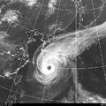 台風14号の気象衛星写真。(気象庁ホームページから引用)