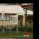 空から60羽もの鳥が降ってきた小学校(画像は『7NEWS Adelaide 2019年7月11日付Facebook「Dying corellas found by students at One Tree Hill Primary School」』のスクリーンショット)