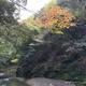 【前編】京都の奥座敷「高雄」を大混雑の紅葉シーズンでも快適に訪問できる裏技