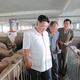 大同江養豚工場を現地指導した金正恩氏(2016年8月18日付朝鮮中央通信より)