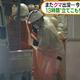 加賀温泉駅前の商業施設に逃げ込んだクマを駆除