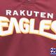 Tohoku Rakuten Golden Eagles 東北楽天ゴールデンイーグルス