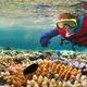 地球温暖化でサンゴ礁の99%が死滅する!? 私たちにできる対策とは