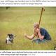 上手く指示をこなした時にはサムズアップのサインで褒めるクロエさん(画像は『The Sun 2021年6月15日付「HAND OF DOG Deaf collie can now round up sheep again after being taught sign language」(Credit: SWNS)』のスクリーンショット)