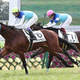 <京都6R新馬戦>フアナ(右)に3/4馬身差をつけデビュー戦で勝利のアドマイヤビルゴ