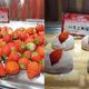 いちご好きはスイパラへ急げ!とちおとめから苺大福まで食べ放題やってるよ〜