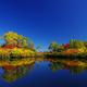大雪山温泉高原・エゾ沼の紅葉