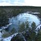 エストニアはタリン旧市街だけじゃない!豊かな自然が残るラヘマー国立公園 ヴィル湿原を歩く #link_Estonia
