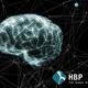 画像はHBPのロゴとイメージ図 【The Human Brain Project (HBP)】