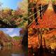 秋の旅行におすすめスポット 映える場所3選