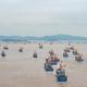 東中国海の休漁期終了、漁船が一斉に出港