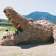 稲わらを使って作った巨大なオブジェ」(昨年度の作品)