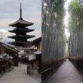 左は二寧坂、右は嵐山の竹林(画像はIsamu HIROSE(@BubbleHead