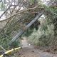 千葉県内で約2000本の電柱が倒壊・損傷し、送電網が崩壊。停電の全面復旧には10日間以上を要した