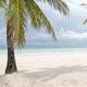 美しいビーチで知られるボラカイ島。露出の多いビキニを着ていたとして観光客が逮捕された/CNN Philippines/JL Javier