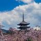 奈良旅行で「地図がなくても道に迷わない」裏技