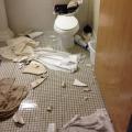 20190813-toilet-explosions-02