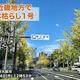 本日、近畿地方で「木枯らし1号」 昨年より18日早く