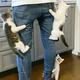 提供:仲良し保護猫 うに むぎ はち むー (@uni_mugi_hachi) さん