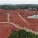新型肺炎対策と同時に貧困対策、アブラツバキの栽培進む 江西省万安県