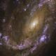 爆発的な渦中で見つかった3つの超新星