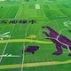 水田に浮かぶ恐竜の巨大絵画 雲南省楚雄