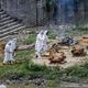 ネパール首都カトマンズの川岸で、新型コロナ関連の死者を火葬にする作業員/Sunil Pradhan/SOPA Images/LightRocket/Getty Images