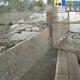 台風17号の暴風域に入っている沖縄 転倒して骨折するなど10人がけが