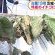 台風19号の影響でイチゴに被害 茨城・常陸大宮市