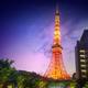 """東京タワーをバックに""""ムビジェ二""""!「Cancamナイトプール」がオープン"""