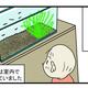 少し悲しい思い出…メダカが減っていく原因は「アノ生き物」にあった!【こどもと見つけた小さな発見日誌 Vol.16】