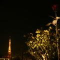 夜景をISO100で撮影