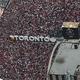 18-19NBAファイナルを制したトロント・ラプターズの優勝パレードに集まったファン(2019年6月17日撮影)。(c)Tom Szczerbowski/Getty Images/AFP
