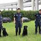 横浜税関の麻薬探知犬とハンドラーたち