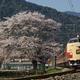 兵庫県丹波市山南・福知山線谷川駅付近 2011年4月中旬撮影