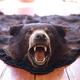 猟師の中でも「クマ撃ち」をする人は特殊らしい(写真はイメージです)