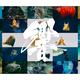 出典元:市立しものせき水族館 海響館プレスリリース