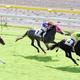 ゼンノエルシドのデビュー戦となった平成11年の3歳新馬戦。残念ながら写真ではその立派な5本目の足は確認できず……